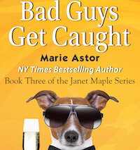 Bad-Guys-Get-Caught_-Final-Amazon